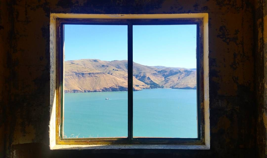 """""""Godley Head"""" Guided Tour- from Christchurch Godley Head, Governors bay, NZ #bff18dee-30df-48a5-9bb2-de937359076c"""