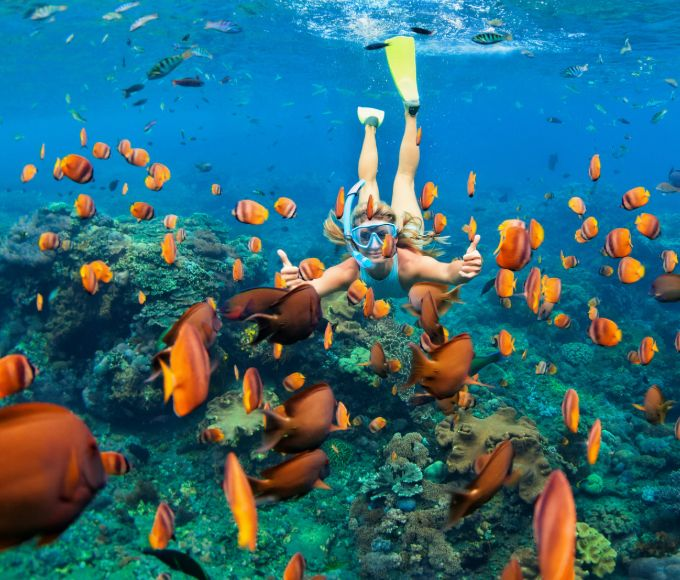 ✈️ Fly + Snorkel Northern Package - Whitsundays Whitehaven, Whitsundays, Australia #ffc3eac0-e497-41fb-aed0-b30e6508f7b0