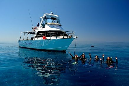 Great Barrier Reef Day Trip - Snorkeling or Discover Scuba Great Barrier Reef, Australia #94f80640-95da-4c91-a8b9-dd1c38e2349d