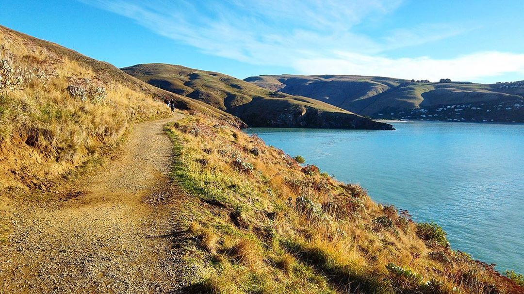 """""""Godley Head"""" Guided Tour- from Christchurch Godley Head, Governors bay, NZ"""