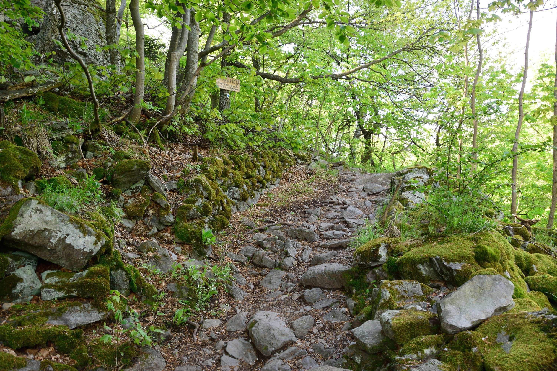 Selmeci-hegység Bakancsos Túra Szlovákia, Selmecbánya #005b24cf-a399-4f71-9fba-4a86bec89670