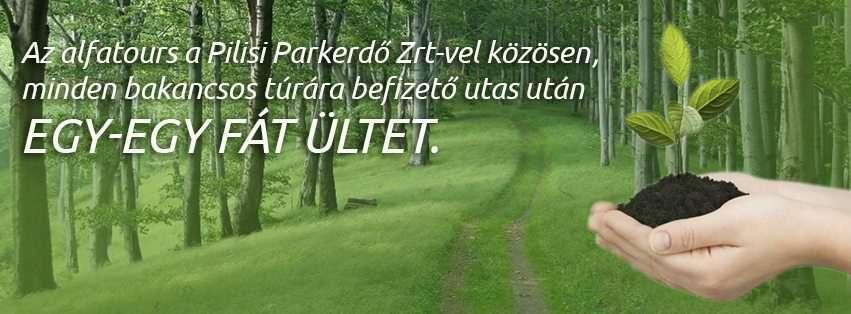 Selmeci-hegység bakancsos túra Szlovákia, Selmecbánya #d73e1d1d-58b7-4442-802e-1c4b78ea0fab