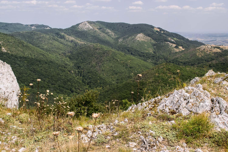 Dél-Erdély nemzeti parkjai