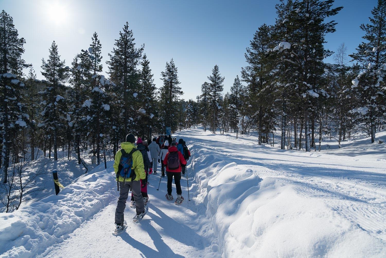 Lappföldön a sarki fény nyomában Lappföld, Finnország #4f2a30ad-924f-4662-a11d-21367a6acbeb
