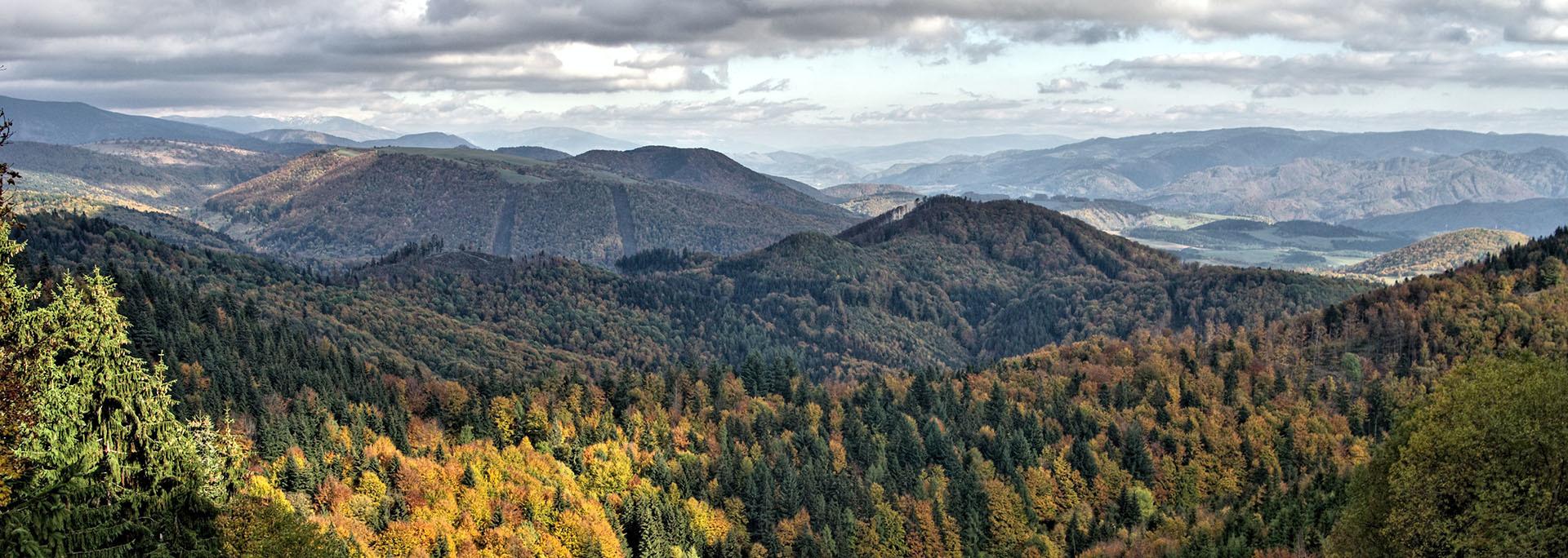 Besztercebánya hegyei között Pánsky, Szlovákia