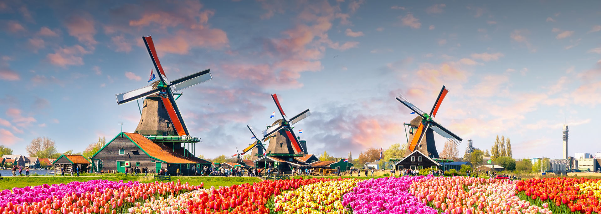 Kerékpártúra a tulipánok földjén Hollandia