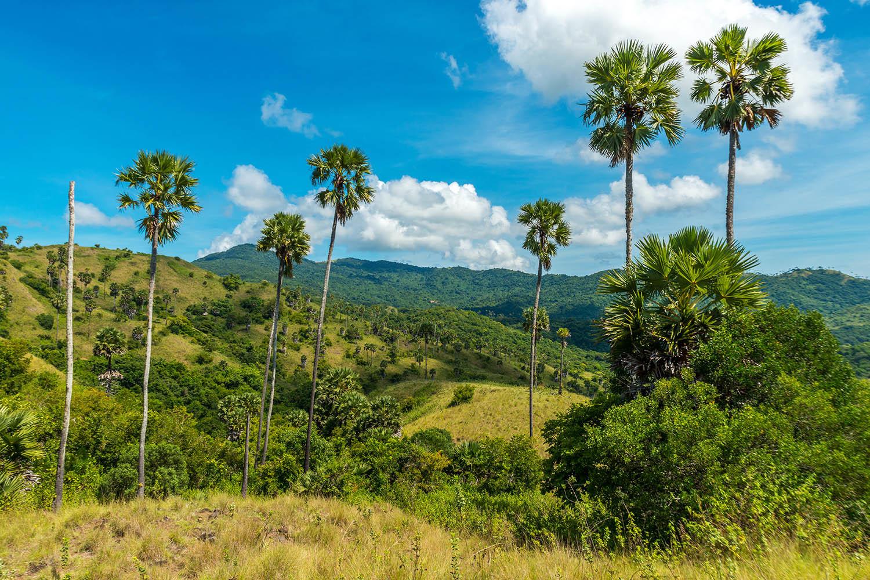 Bali: óceán és hegyek Indonézia #0172fdad-44a6-4964-a003-d272bc685c12