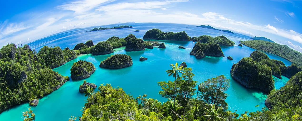 Komodo – Raja Ampat – Bali Indonézia #9a277806-80f1-428f-a405-3ff9965b18cc