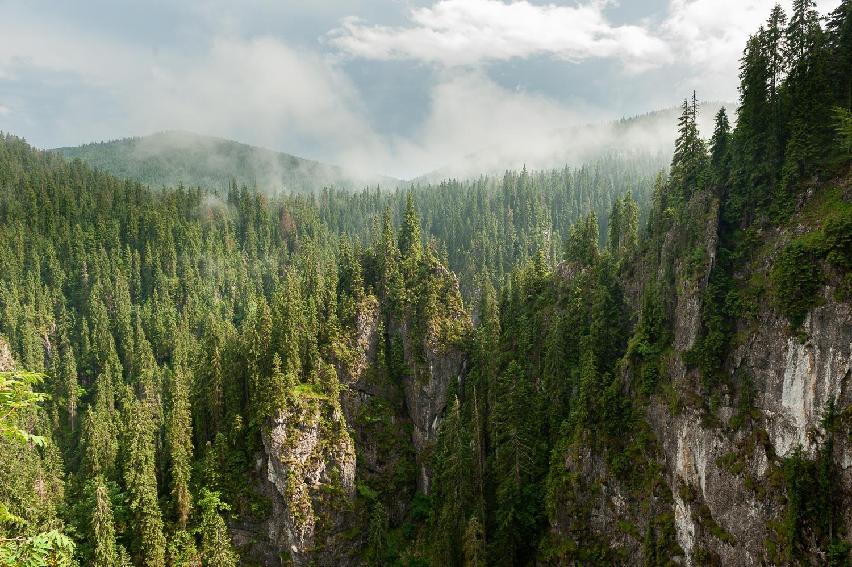 Bihar-hegység, Pádis-fennsík Bihar-hegység, Erdély, Románia #1a8a4dc1-2c0b-4047-a76c-43dd769f931f