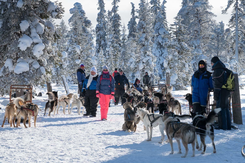 A Sarki Fény Nyomában Lappföldön Lappföld, Finnország #6cbdce84-6c13-44ca-a977-a725837de8f2
