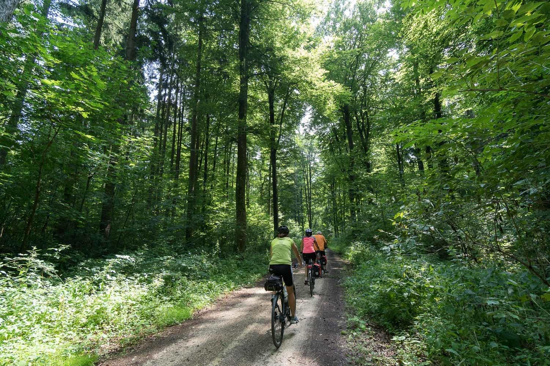 Donauwörth-Passau kerékpártúra Németország #75b3061c-0f3c-40dc-946b-2cb6bf69d989