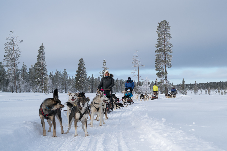 Lappföldön a sarki fény nyomában Lappföld, Finnország #d48201b3-e1b5-403d-889d-c1e8a1c58cc4