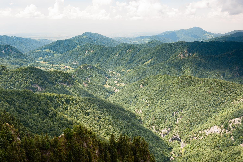 Bihar-hegység, Pádis-fennsík Bihar-hegység, Erdély, Románia #5ff12623-8d00-45c7-975d-0bebcaae1ba6