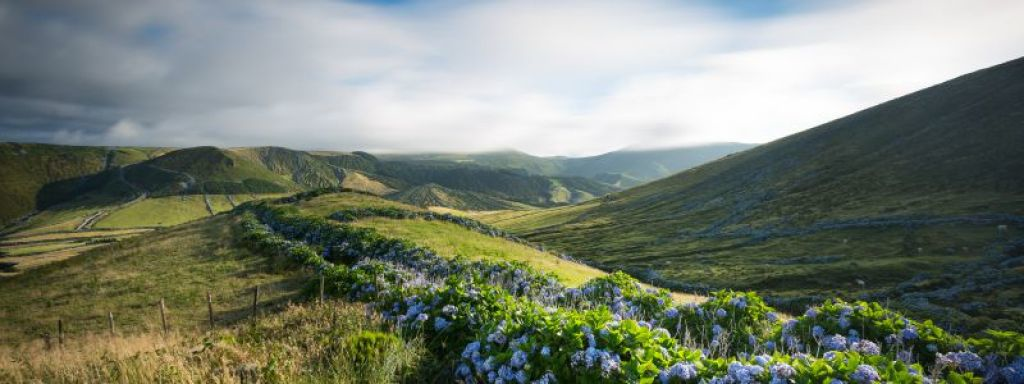 Azori-szigetek: Flores, Faial, Pico, Terceira Azori-szigetek, Portugália #708c5e4d-71f4-436b-9cc8-a406c51077a1