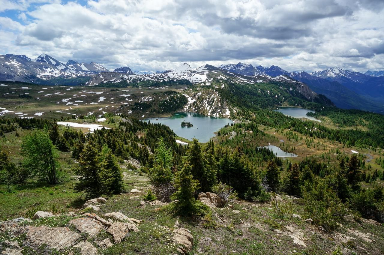 Sunshine Meadows Guided Day Hikes