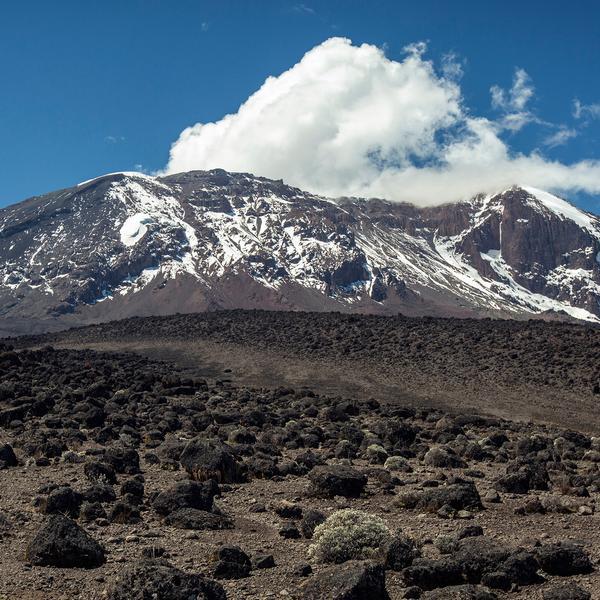Mt Kilimanjaro Trek - Machame Route Mt Kilimanjaro, Tanzania