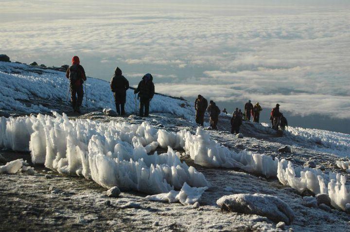 Kilimandzsáró (5895 m) Mászás a Machame Ösvényen Tanzánia #91378979-8607-43bc-86f8-95dd815fb96f