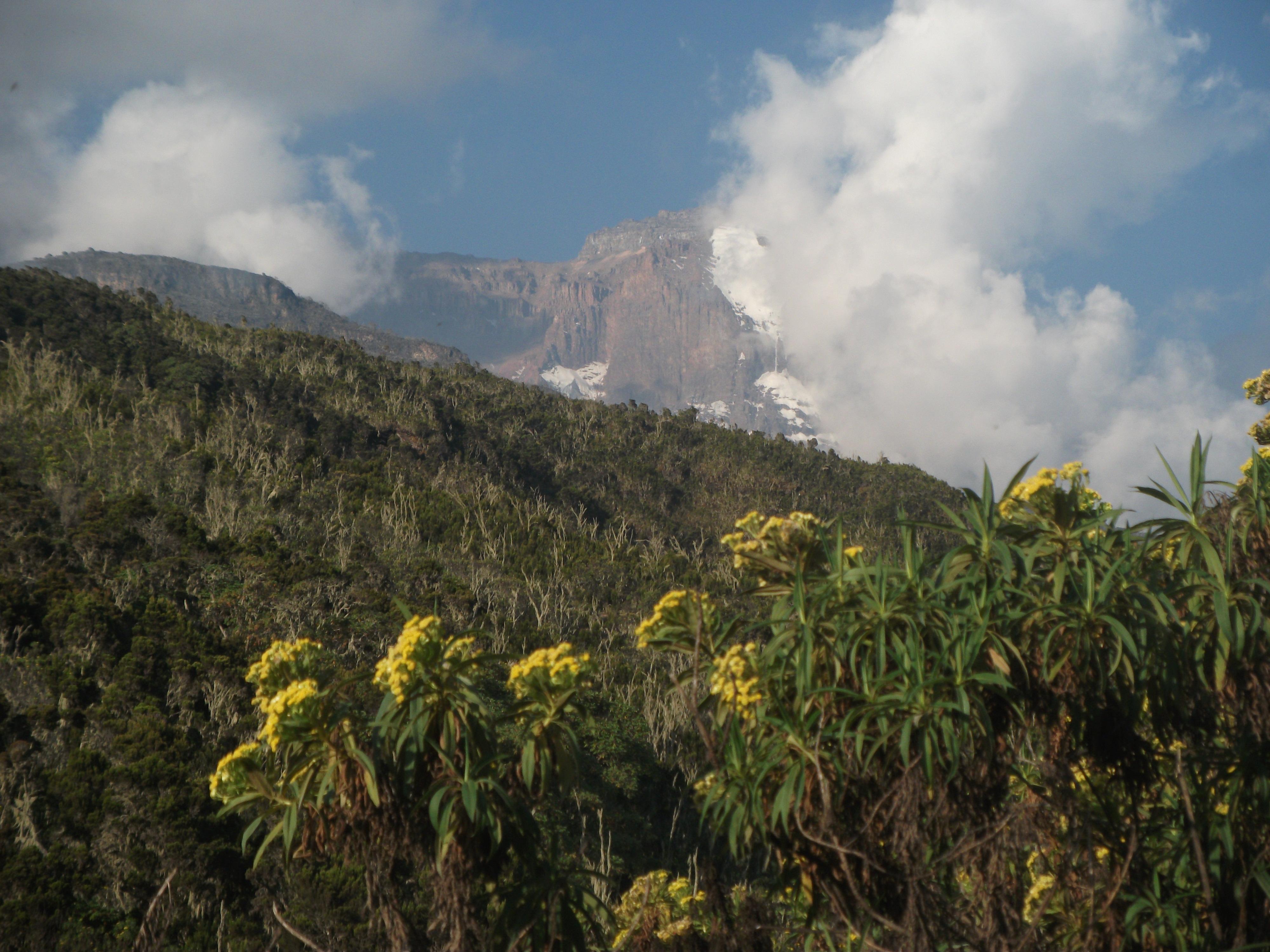Kilimandzsáró (5895 m) Mászás a Machame Ösvényen Tanzánia