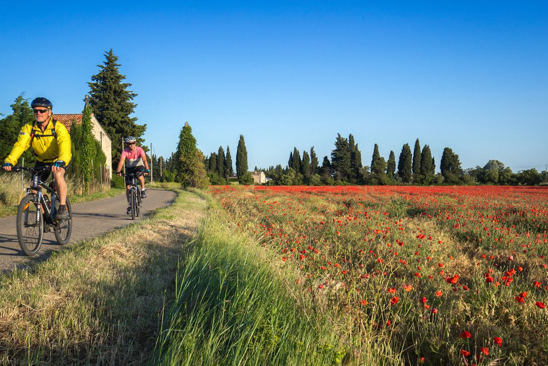 Cycle Provence France