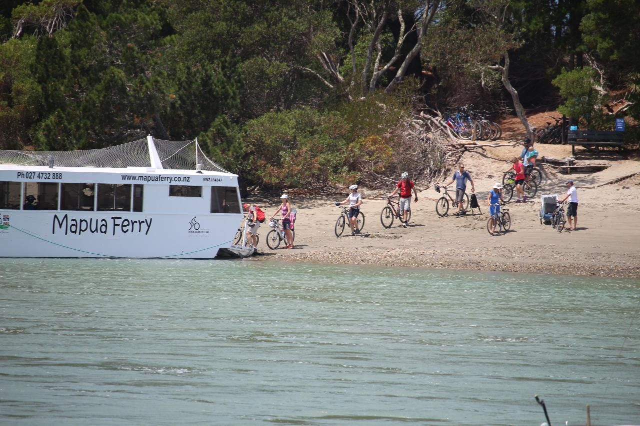 Cycle and Sail in Nelson Nelson, New Zealand #f64aaf45-7f0e-4375-8dfb-81125e8ebf8d