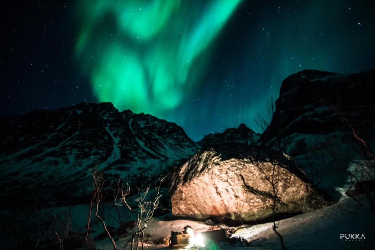 Northern Lights Tesla Experience Tromso, Norway