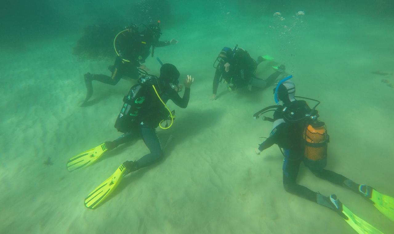 Beginner Scuba Diving - Try Dive Sesimbra, Setubal, Portugal #389821e3-d350-4ebc-bfdb-2f35ee74d130
