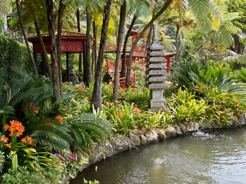 See the beautiful gardens of Madeira with Adam Frost
