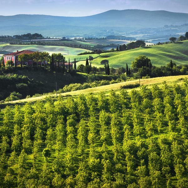 Countryside in Tuscany in Italy