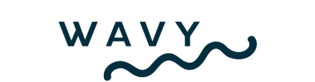 Wavy Logo white background with dark blue wave-shaped line underneath