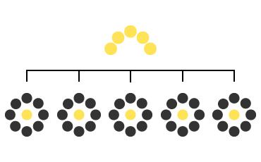 L'organisation du modèle SoS