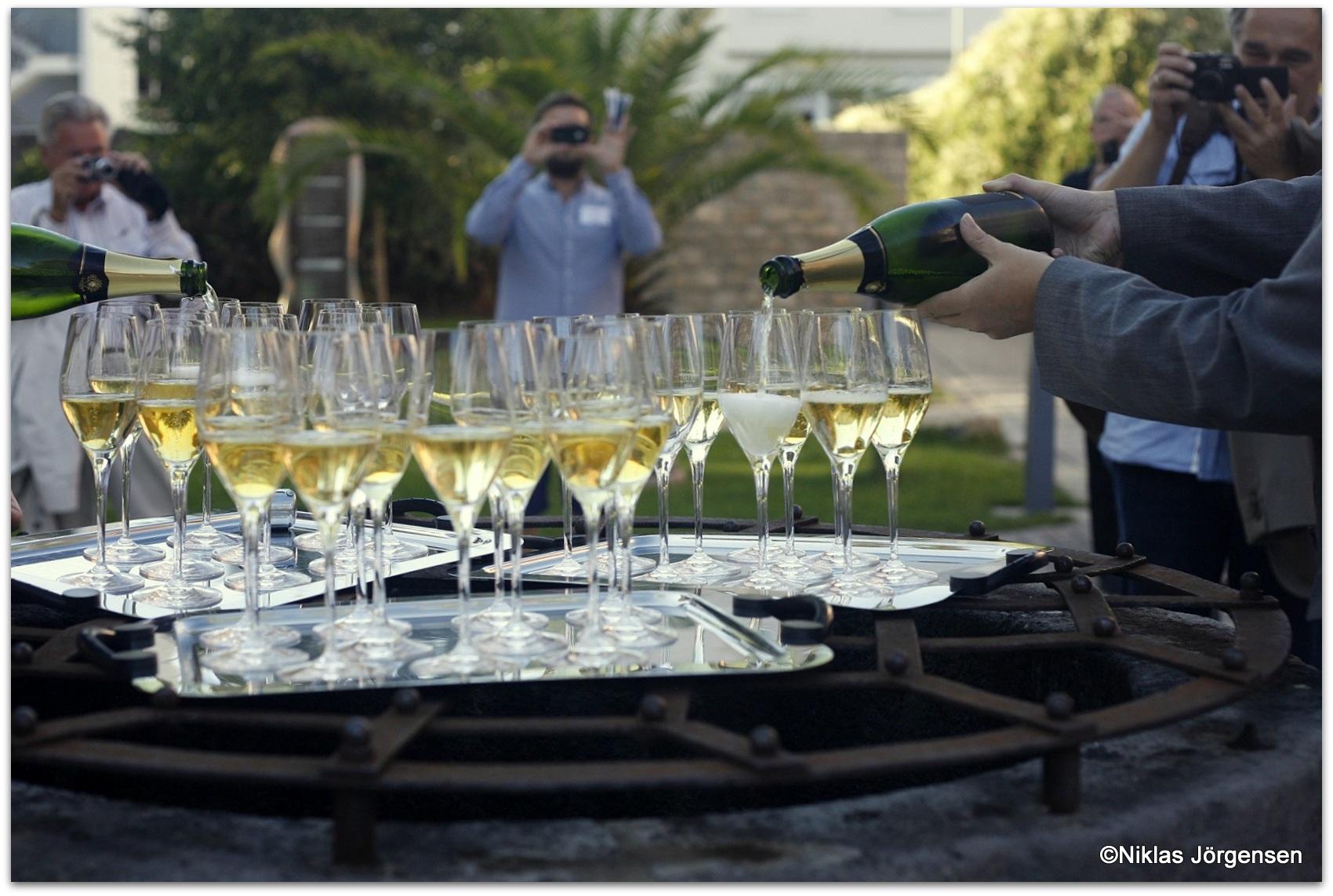 Vin för fest och Valborgshelg | vinköplistan 17
