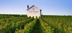 Champagnehistoria med Gula Ankan-vinbanken