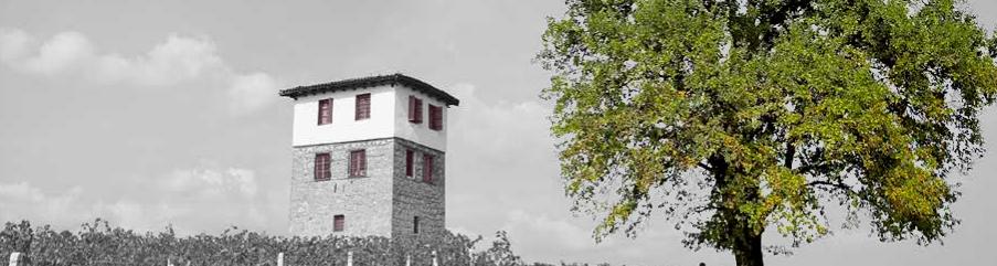 vinkoplistan-vinbanken-kir-yianni
