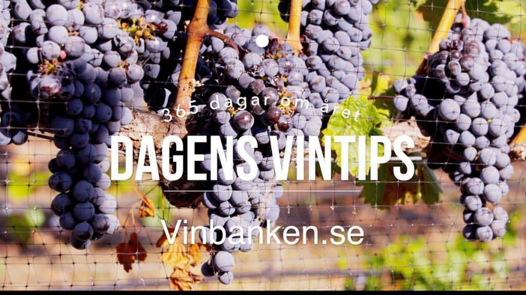 dagens-vintips-vinbanken-elkejung