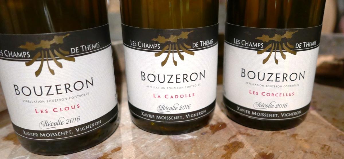 vinprovning-domaine-les-champs-de-themis-bouzeron-vinbanken