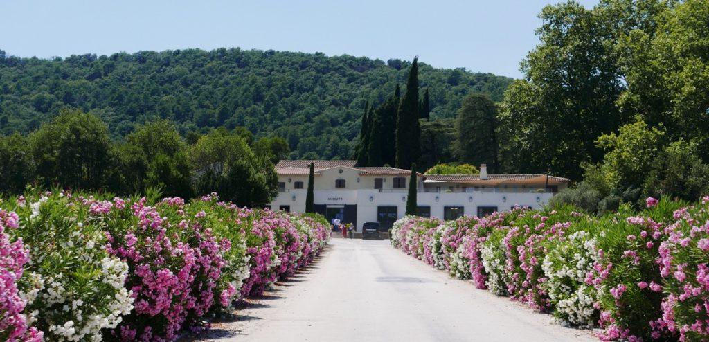 chateau-minuty-provence-for-rosevin-vinbanken