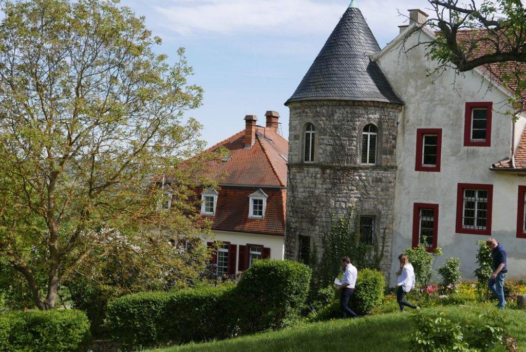 weingut-schloss-westerhaus-rheinhessen-vinbanken