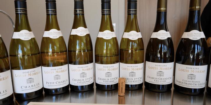 winetasting-domaine-louis-moreau-beine-chablis-vinbanken