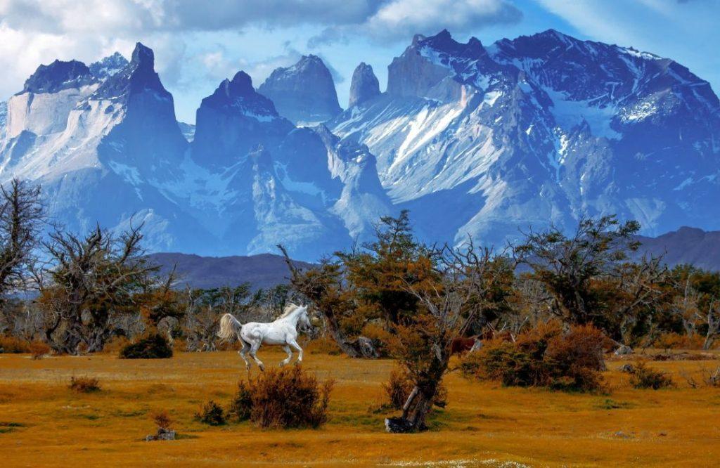 torres-national-park-patagonia-vinbanken