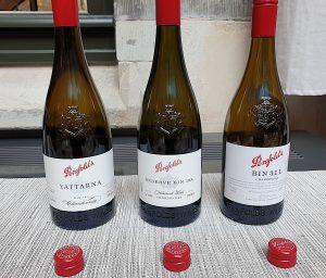 Penfolds Collection 2020 - lanseras på Systembolaget-Winefinder-vinbanken-recension