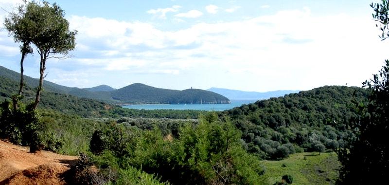 Maremma-Toscana-DOC-uppgraderad-ursprungsbeteckning