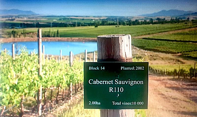 Topp-10-cabernet-sauvignon-vinbanken