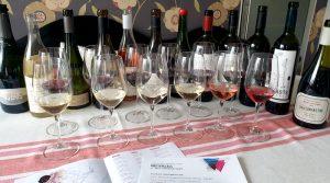 vin-fran-argentina-provning-vinbanken