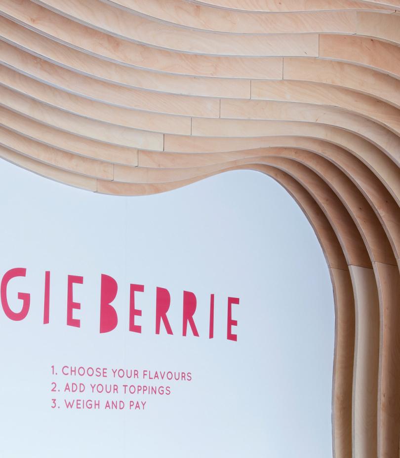 Yoggie Berrie Instructions Grid Image Small 2b