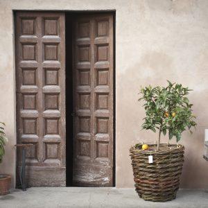 intrecci-toscani-intrecciatori-vecchiano-pisa-gallery-1