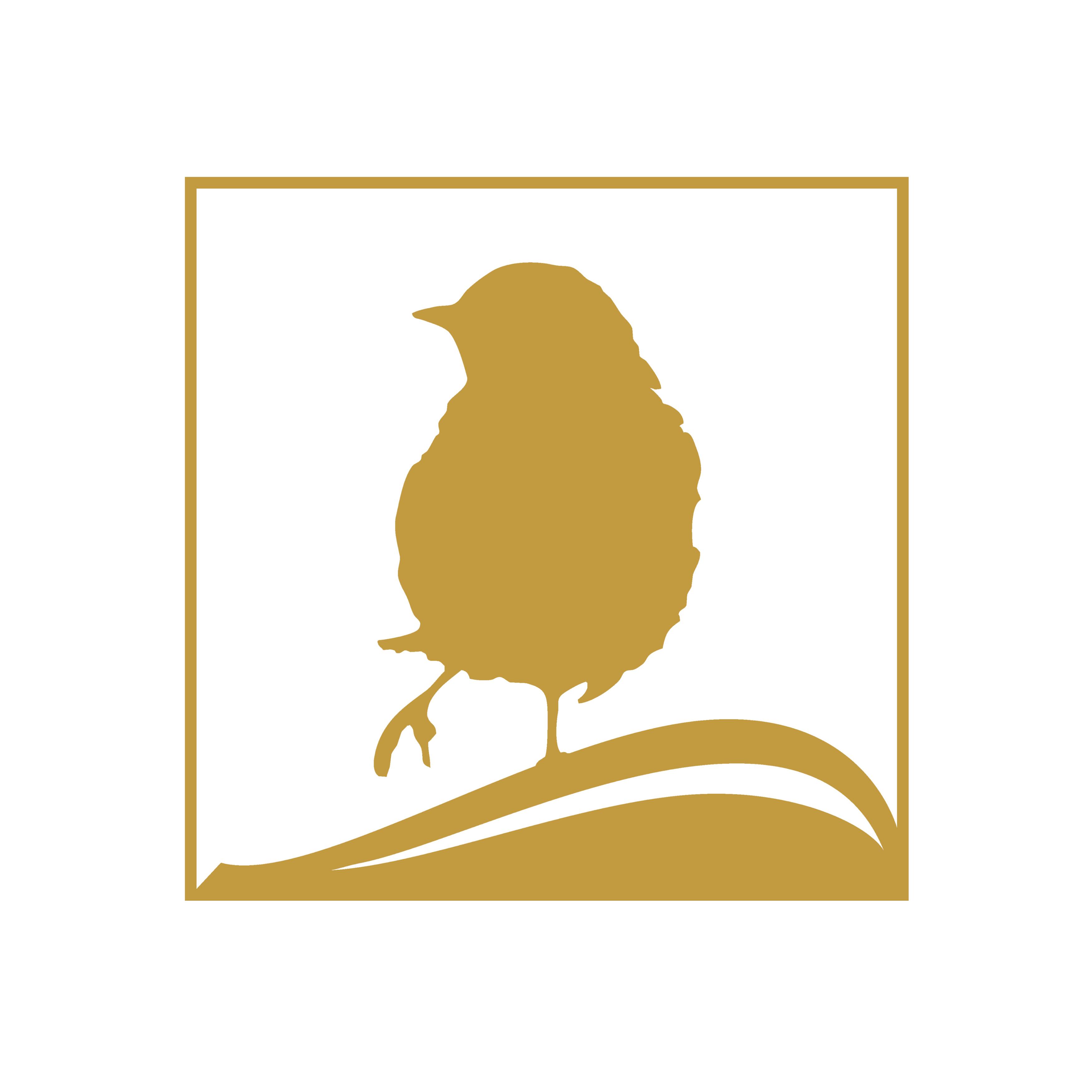 librarti-serena-dominijanni-bookbinders-roma-profile