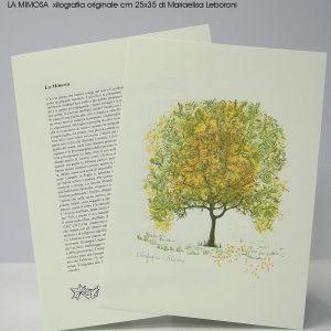 xilocart-stampatori-d-arte-perugia-gallery-2