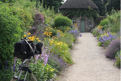 Camera set up for filming in West Dean Gardens