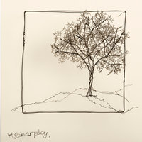 Helaina Sharpley drawing with wire