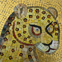 Martin Cheek mosaics for beginners and improvers